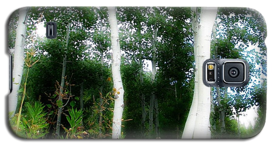 Aspens Galaxy S5 Case featuring the photograph Quaking by Idaho Scenic Images Linda Lantzy