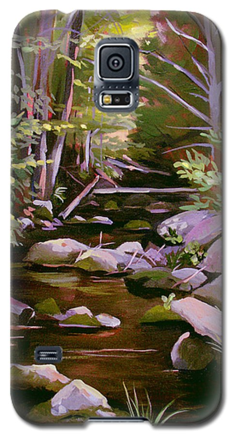 Peoples State Forest Galaxy S5 Case featuring the painting Quiet Brook by Nancy Griswold