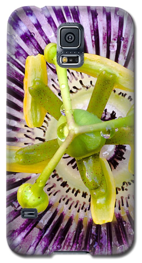 Passion Galaxy S5 Case featuring the photograph Radial Arms by Christopher Holmes