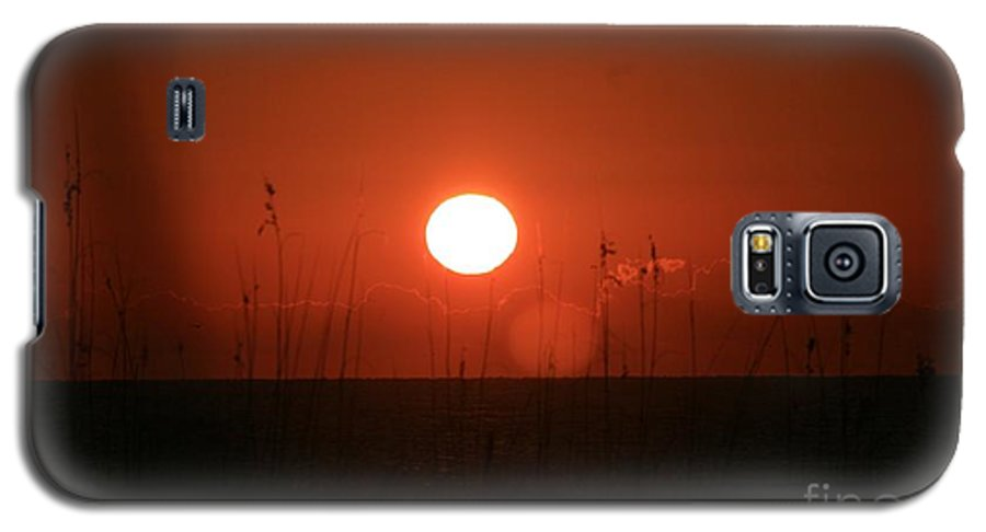 Sunset Galaxy S5 Case featuring the photograph Red Sunset And Grasses by Nadine Rippelmeyer