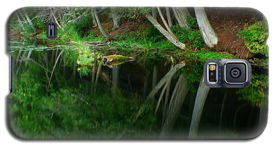 Forest Galaxy S5 Case featuring the photograph Reflections Of A Forest by Idaho Scenic Images Linda Lantzy