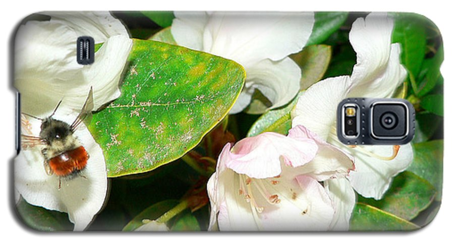 Bee Galaxy S5 Case featuring the photograph Rhododendron And Bee by Larry Keahey