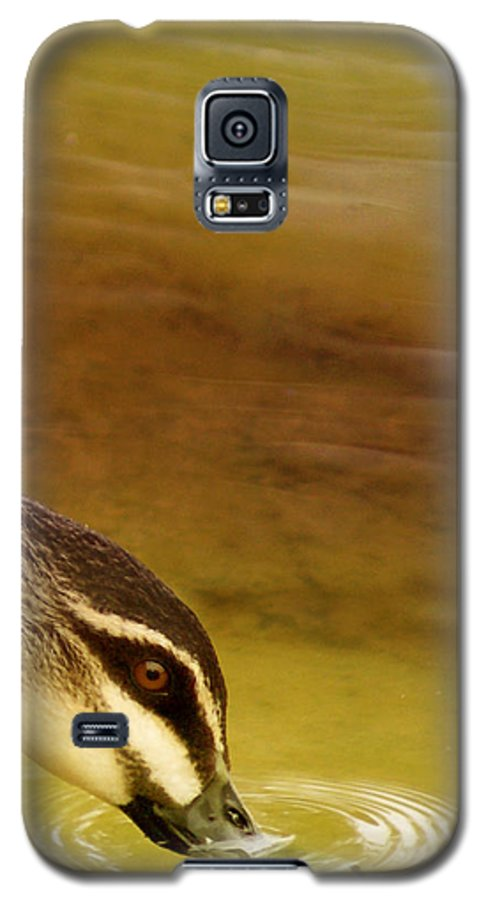 Animals Galaxy S5 Case featuring the photograph Ripples by Holly Kempe