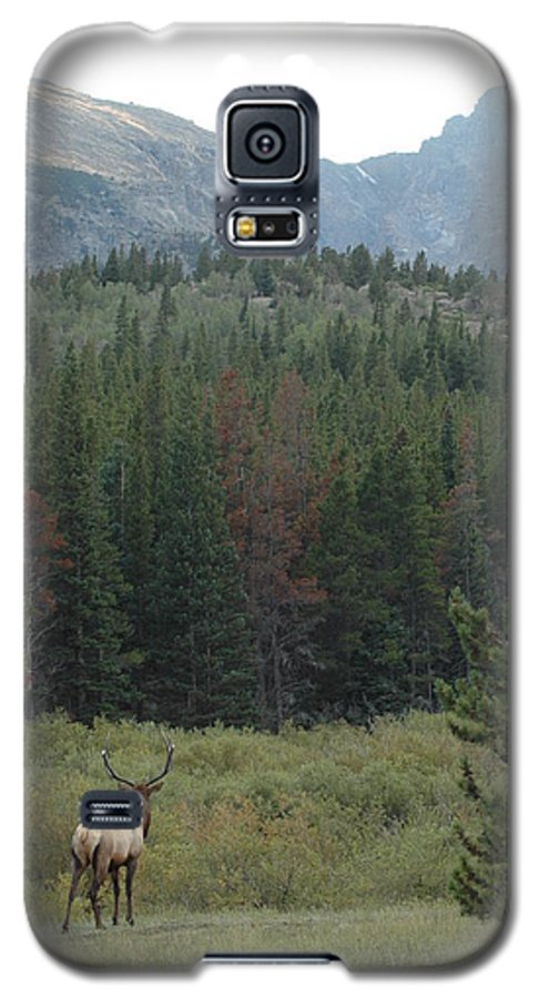 Elk Galaxy S5 Case featuring the photograph Rocky Mountain Elk by Kathy Schumann