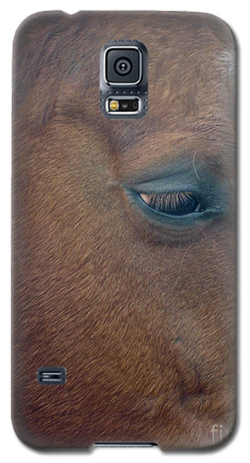Horse Galaxy S5 Case featuring the photograph Sad Eyed by Shelley Jones