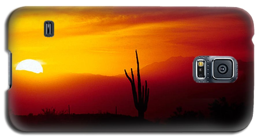 Arizona Galaxy S5 Case featuring the photograph Saguaro Sunset by Randy Oberg