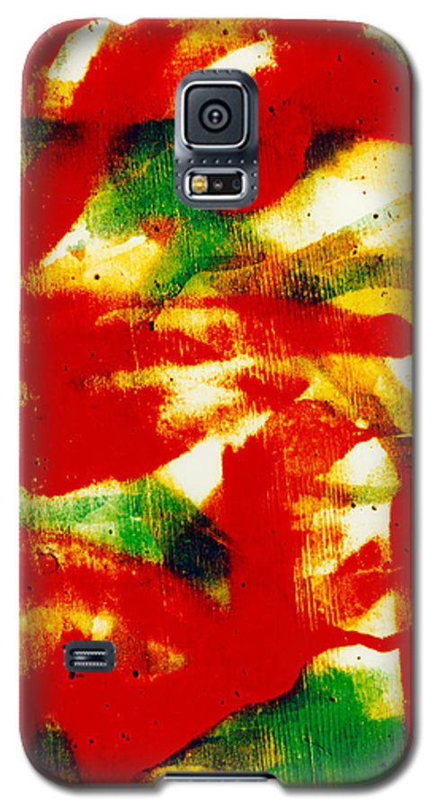 Abstract Galaxy S5 Case featuring the photograph Salsa by David Rivas