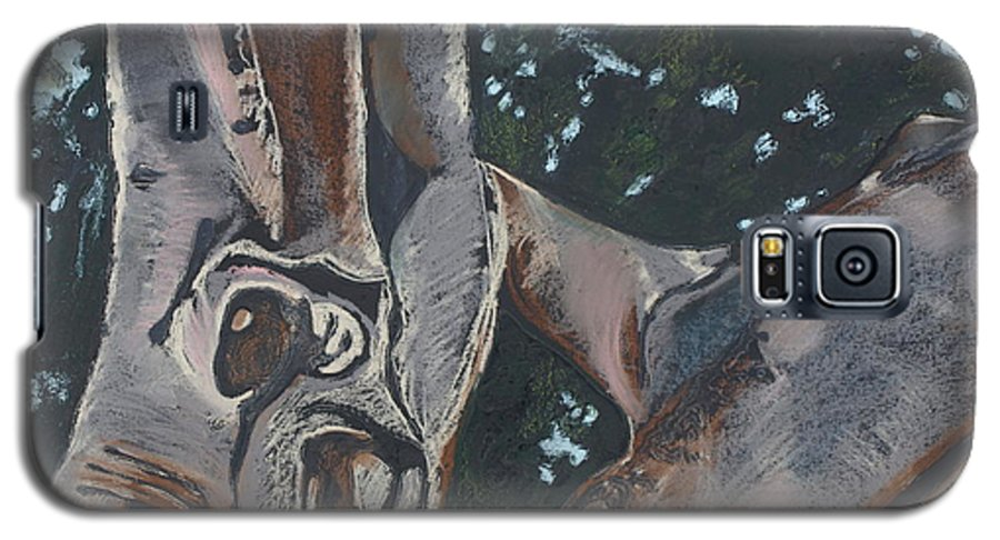 Contemporary Tree Galaxy S5 Case featuring the drawing San Diego Zoo by Leah Tomaino
