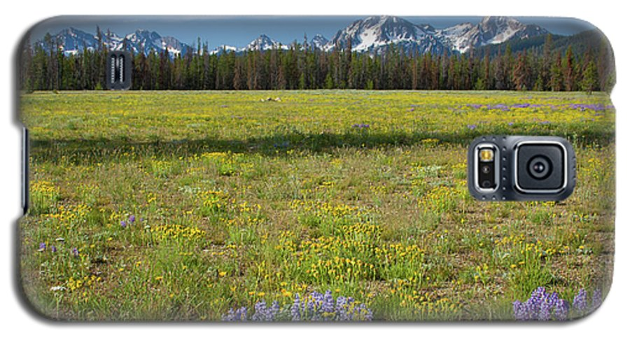 Wildflowers Galaxy S5 Case featuring the photograph Sawtooths And Wildflowers by Idaho Scenic Images Linda Lantzy