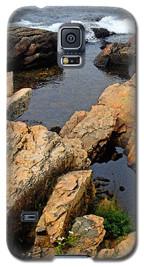 Landscape Galaxy S5 Case featuring the photograph Scoodic Tidepool by Peter Muzyka