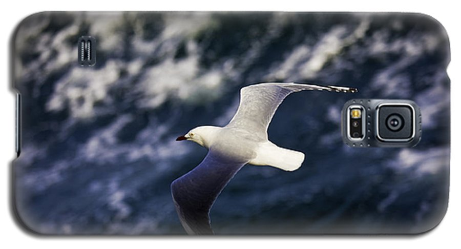 Seagull Galaxy S5 Case featuring the photograph Seagull In Wake by Avalon Fine Art Photography