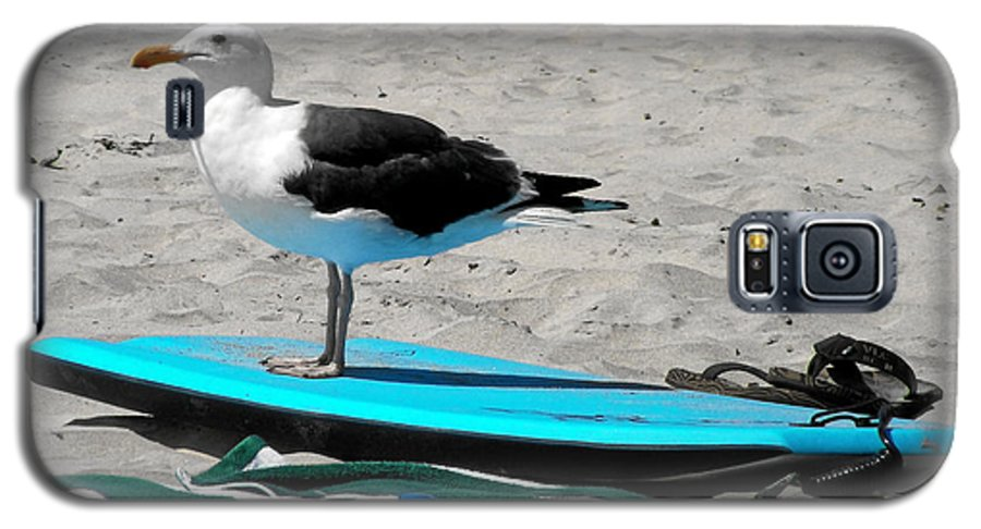 Bird Galaxy S5 Case featuring the photograph Seagull On A Surfboard by Christine Till