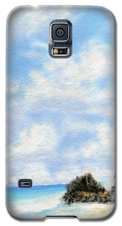 Coastal Decor Galaxy S5 Case featuring the painting Secret Beach Sky by Kenneth Grzesik