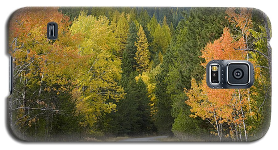 Trees Galaxy S5 Case featuring the photograph Selkirk Color by Idaho Scenic Images Linda Lantzy