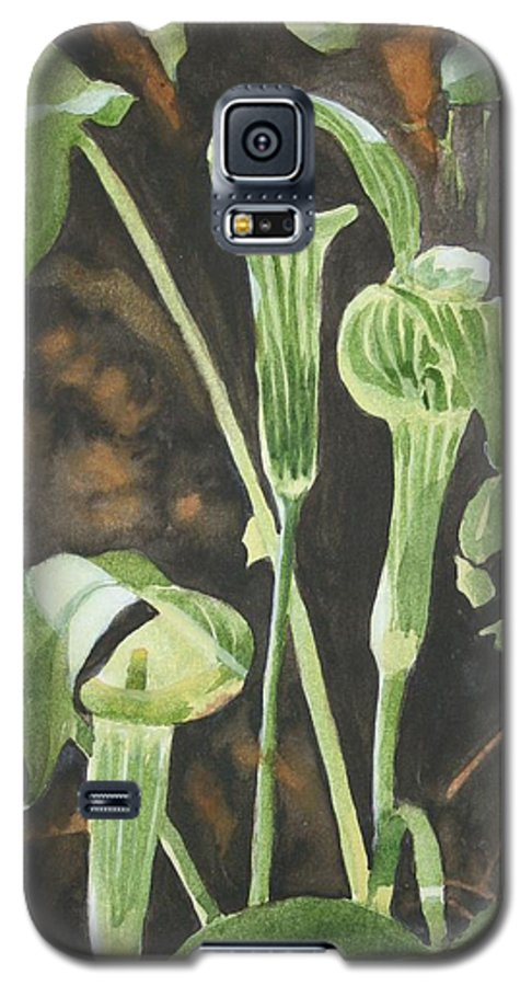Woods Galaxy S5 Case featuring the painting Sermon In The Woods by Jean Blackmer