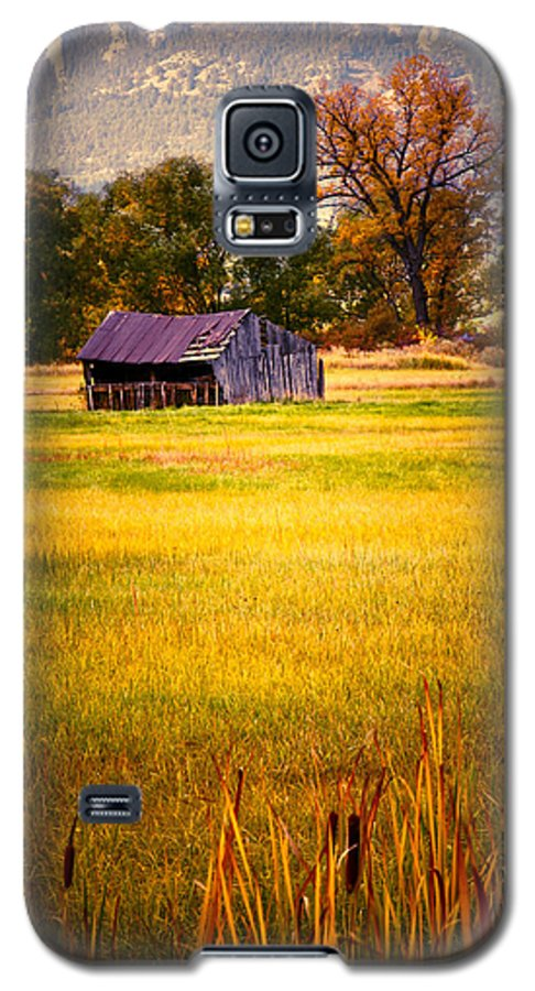 Shed Galaxy S5 Case featuring the photograph Shed In Sunlight by Marilyn Hunt
