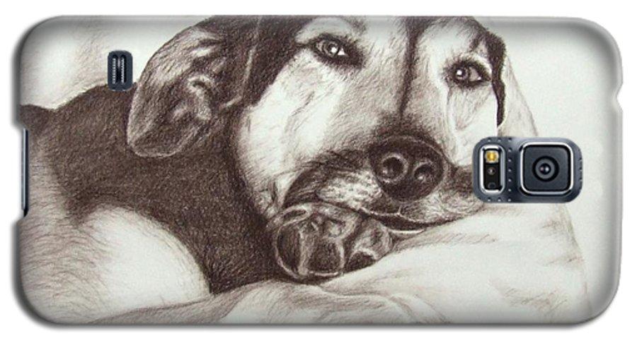 Dog Galaxy S5 Case featuring the drawing Shepherd Dog Frieda by Nicole Zeug