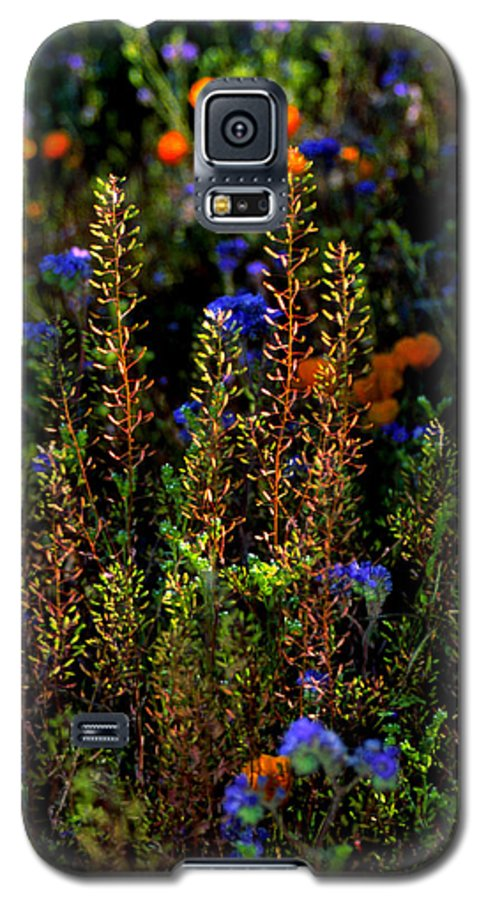 Flowers Galaxy S5 Case featuring the photograph Shimmers by Randy Oberg