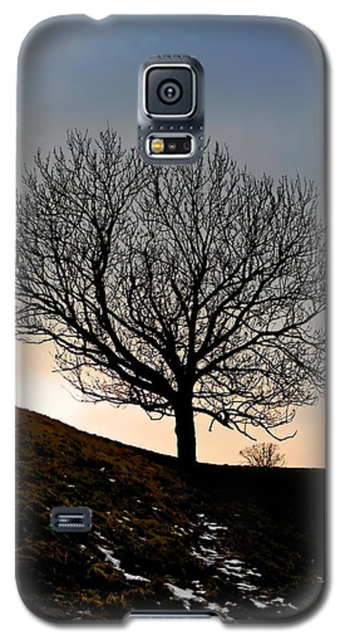 Tree Galaxy S5 Case featuring the photograph Silhouette Of A Tree On A Winter Day by Christine Till