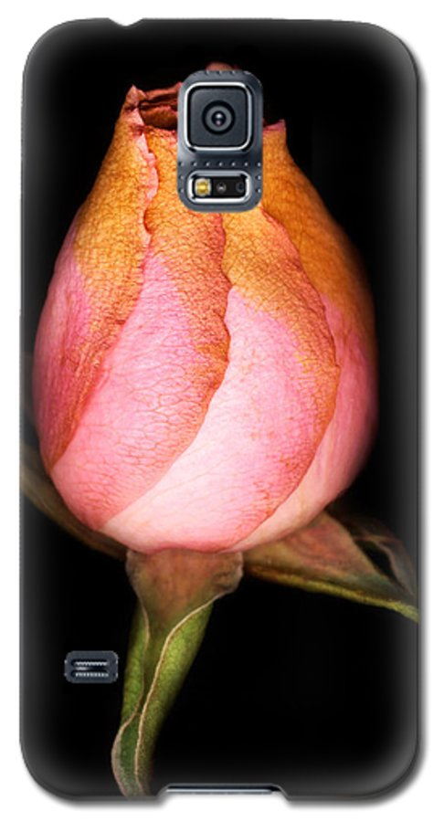 Rose Galaxy S5 Case featuring the photograph single Rose by Marilyn Hunt