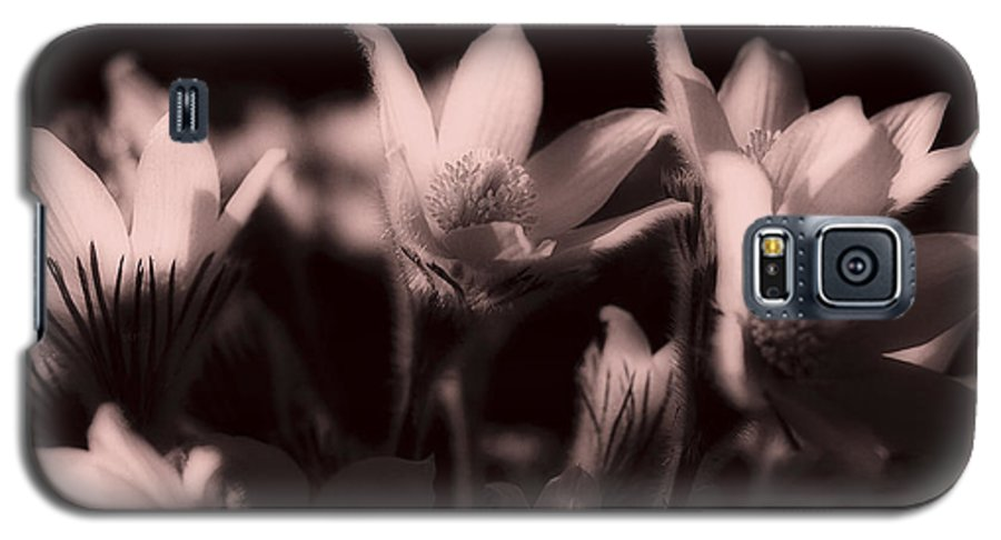 Flowers Galaxy S5 Case featuring the photograph Sleepy Flowers 2 by Marilyn Hunt