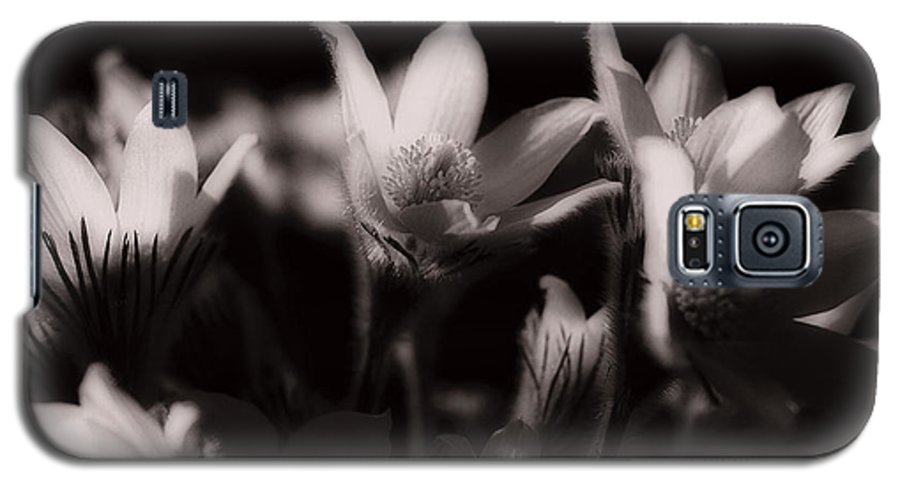 Flowers Galaxy S5 Case featuring the photograph Sleepy Flowers by Marilyn Hunt