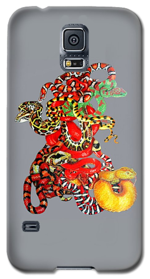 Reptile Galaxy S5 Case featuring the drawing Slither by Barbara Keith