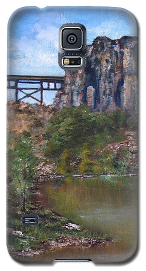 Landscape Galaxy S5 Case featuring the painting S.o.b Caynon by Darla Joy Johnson