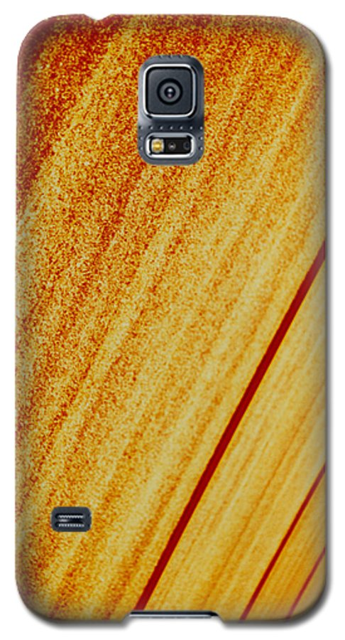Abstract Galaxy S5 Case featuring the photograph Sod by David Rivas