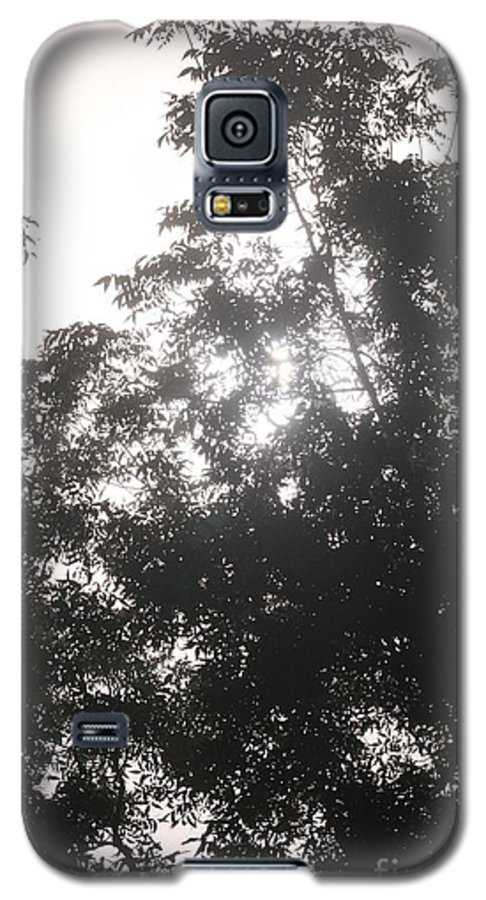 Light Galaxy S5 Case featuring the photograph Soft Light by Nadine Rippelmeyer