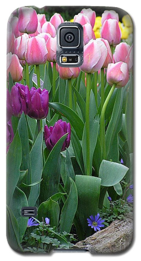 Tulips Galaxy S5 Case featuring the photograph Spring Colors by Louise Magno