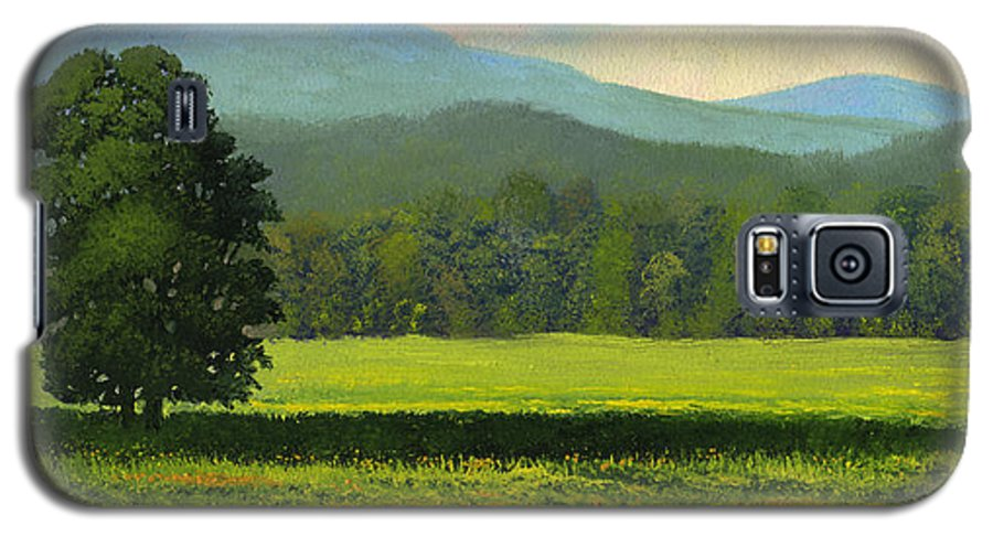Landscape Galaxy S5 Case featuring the painting Spring Flowers by Frank Wilson