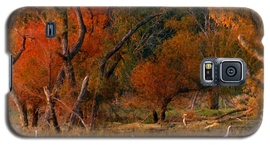 Landscape Galaxy S5 Case featuring the photograph Squaw Creek Egrets by Steve Karol