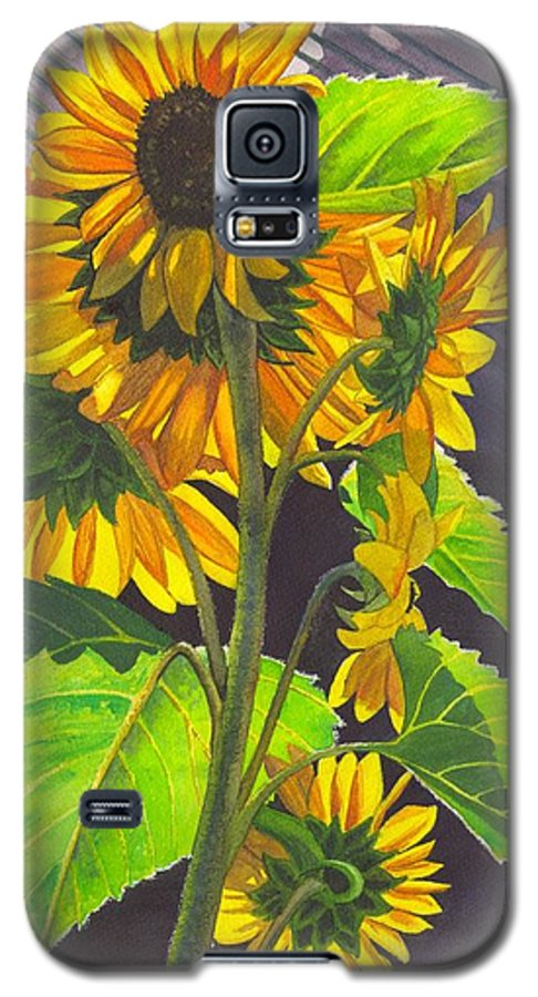 Sunflowers Galaxy S5 Case featuring the painting Stalk Of Sunflowers by Catherine G McElroy