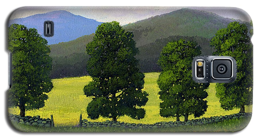 Landscape Galaxy S5 Case featuring the painting Stonewall Field by Frank Wilson