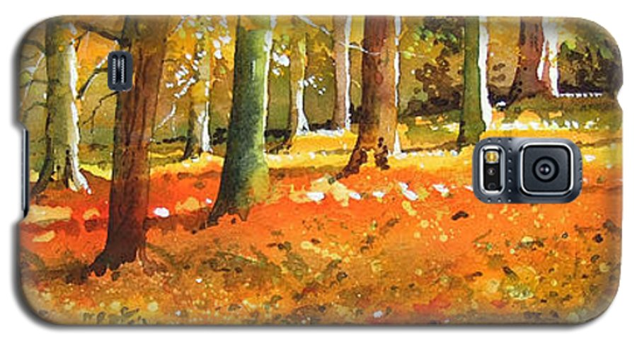 Woodland Landscape. Galaxy S5 Case featuring the painting Strid Wood by Paul Dene Marlor