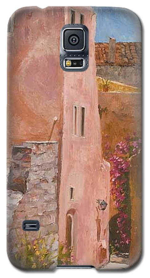 Urban Galaxy S5 Case featuring the painting Sun Drenched by Kit Hevron Mahoney