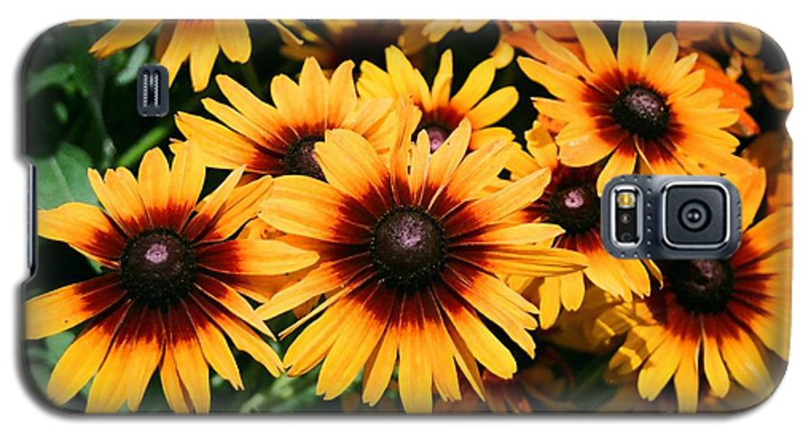 Sunflowers Galaxy S5 Case featuring the photograph Sunflowers by Dean Triolo