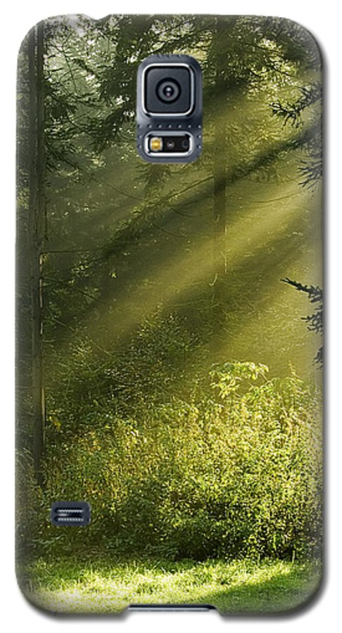 Nature Galaxy S5 Case featuring the photograph Sunlight by Daniel Csoka
