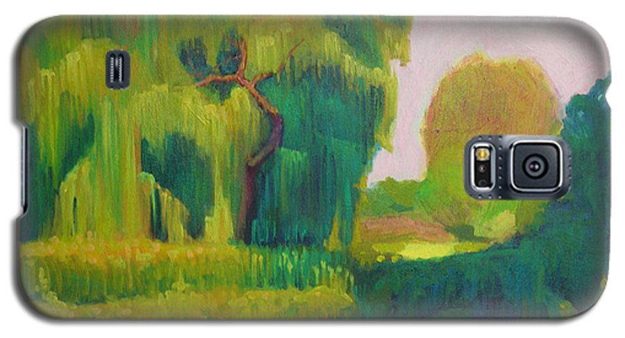 Landscape Galaxy S5 Case featuring the painting Sunny Day Indian Boundary Park by David Dozier