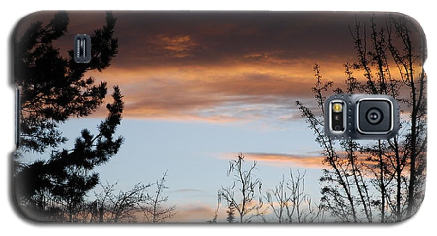 Sunset Galaxy S5 Case featuring the photograph Sunset Thru The Trees by Rob Hans