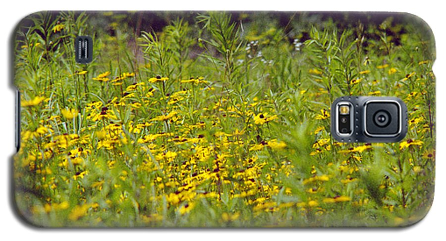 Nature Galaxy S5 Case featuring the photograph Susans In A Green Field by Randy Oberg