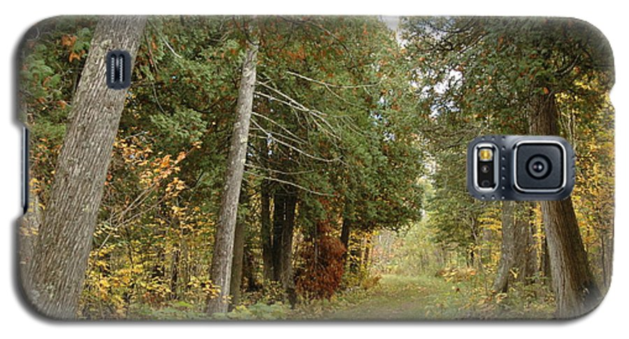 Landscape Galaxy S5 Case featuring the photograph Tettegouche State Park by Kathy Schumann