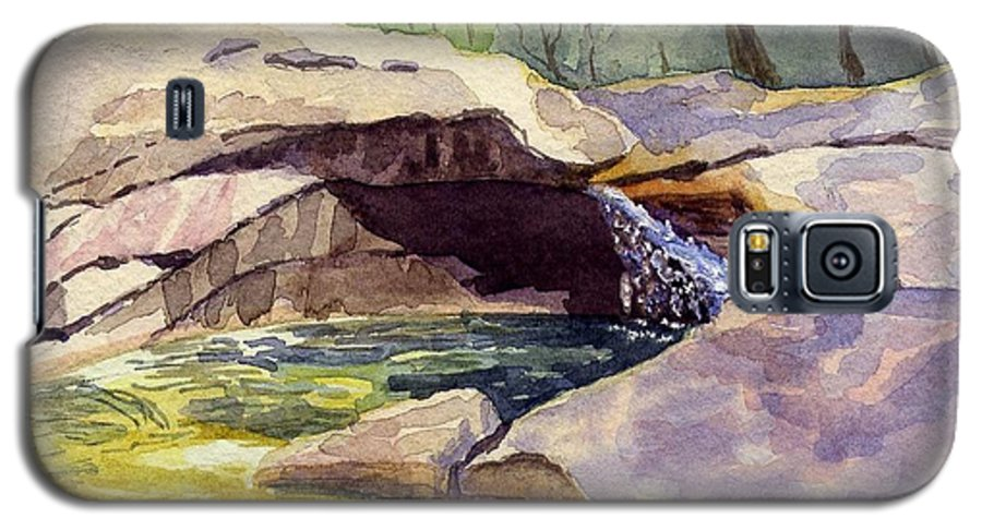 The Basin Galaxy S5 Case featuring the painting The Basin by Sharon E Allen