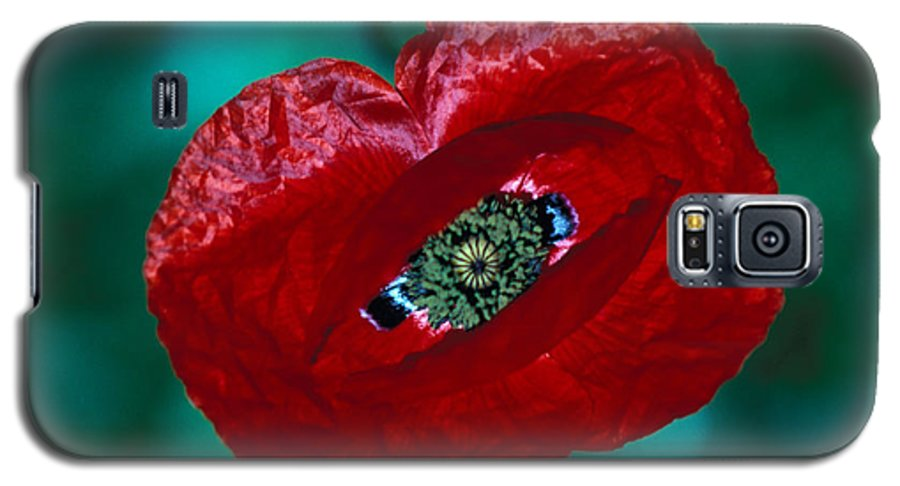 Bright; Red; Green; Brilliant; Flower; Flora; Close-up; Eye; Nature; Opium; Sleep; Death; Hypnotic; Magic; Wizard; Dorothy; France Galaxy S5 Case featuring the photograph The Opiate Of Desire by Carl Purcell