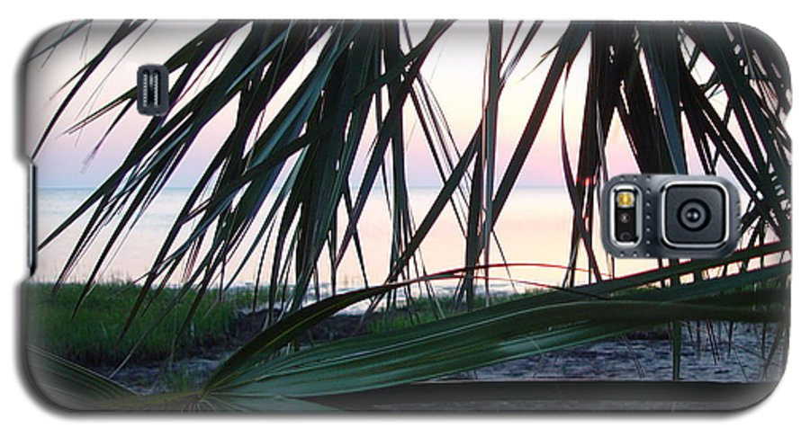 Palms Galaxy S5 Case featuring the painting The Peeking Palms by Debbie May