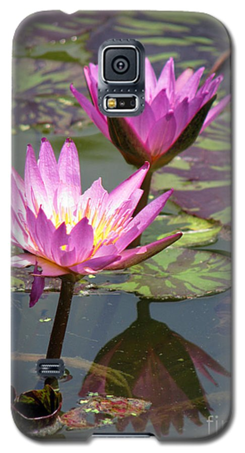 Lillypad Galaxy S5 Case featuring the photograph The Pond by Amanda Barcon
