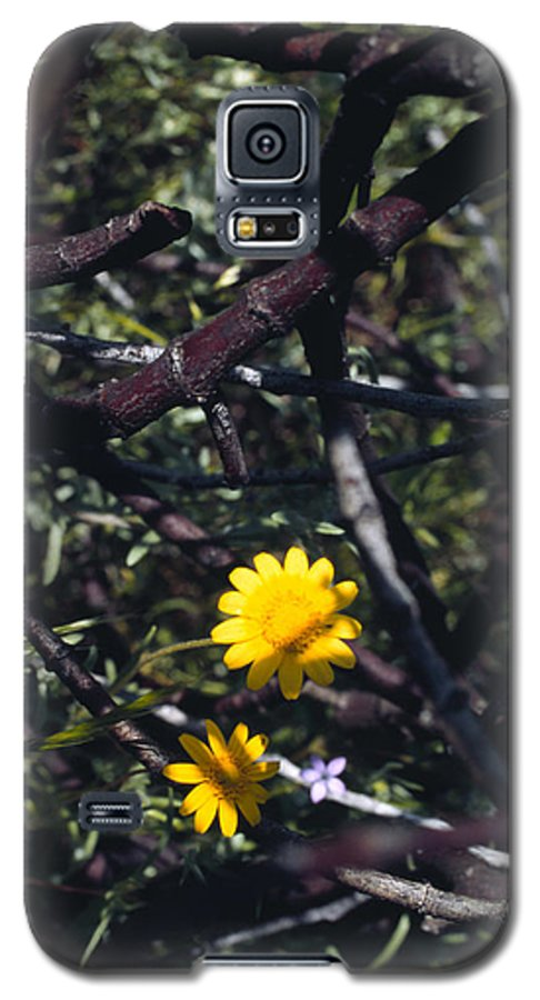 Flower Galaxy S5 Case featuring the photograph The Prisoner by Randy Oberg