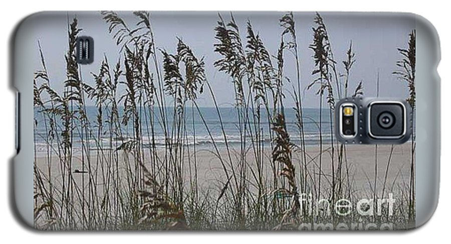 Florida Beach Near St. Augustine Galaxy S5 Case featuring the photograph Thru The Sea Oats by Barb Montanye Meseroll