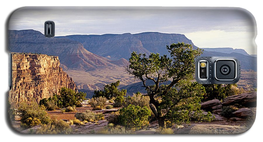 Arizona Galaxy S5 Case featuring the photograph Toroweap by Kathy McClure